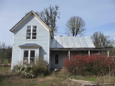 Dallas Single Family Home For Sale: 19245 Falls City Rd