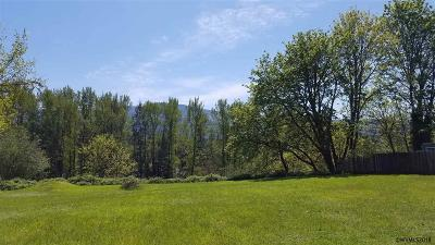 Mill City Residential Lots & Land Active Under Contract: 163 NE 4th Av
