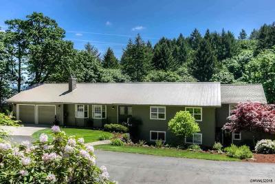 Salem Single Family Home For Sale: 929 Elkins Wy