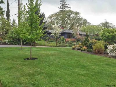 Salem Single Family Home For Sale: 520 Lane Pl