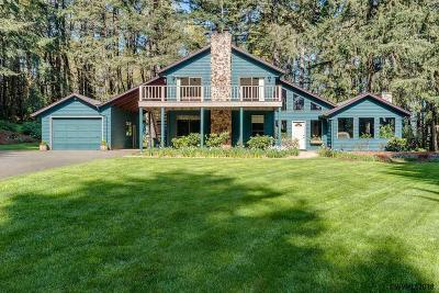 Dallas Single Family Home For Sale: 405 Reuben Boise Rd