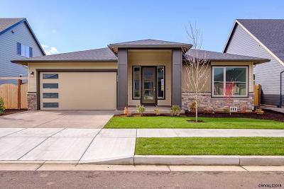 Dallas Single Family Home For Sale: 563 SE Cooper St