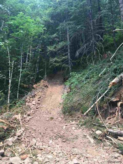 Detroit Residential Lots & Land For Sale: Highway 22 (Tl #2200)