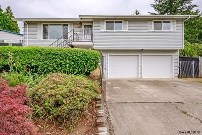 Salem Single Family Home For Sale: 1317 Parkway Dr