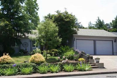 Salem Single Family Home For Sale: 1390 Kathy St
