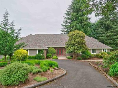 Salem Single Family Home For Sale: 3253 Tranquility Dr