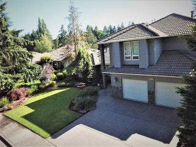 Keizer Single Family Home For Sale: 250 Snead Dr