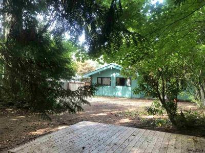 Detroit Single Family Home For Sale: 265 S Detroit Av