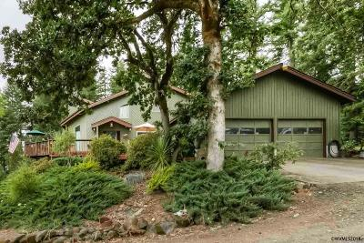 Scio Single Family Home For Sale: 41235 Larwood Dr