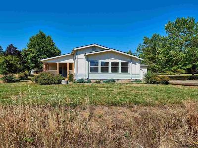 Scio Single Family Home For Sale: 39150 Shilling Dr