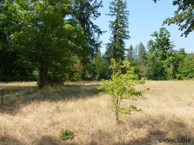 Mill City Residential Lots & Land For Sale: 1345 SW Spring (Next To) St