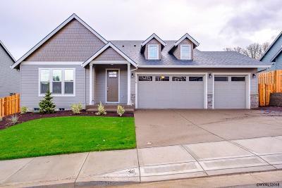 Salem Single Family Home For Sale: 1476 Big Mountain Av