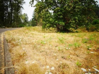 Mill City Residential Lots & Land For Sale: Santiam Pointe (Lot #1) Lp