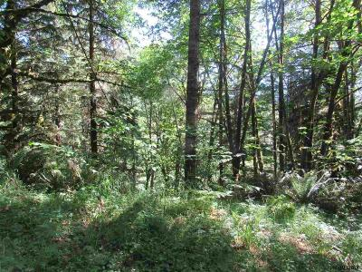 Lyons Residential Lots & Land For Sale: North Fork (Parcel R64326) Rd