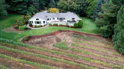 Turner Single Family Home For Sale: 10768 Garma Wy