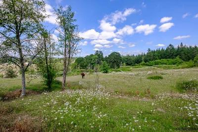 Lebanon Residential Lots & Land For Sale: 30610 Santiam Hwy