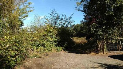 Lebanon Residential Lots & Land For Sale: 37893 E Grant St