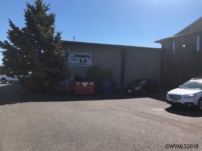 Salem Commercial For Sale: 4560 Ridge Dr