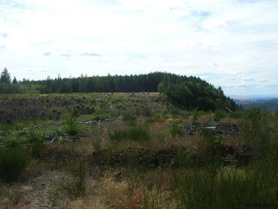 Lyons Residential Lots & Land For Sale: S McCully Mountain Rd