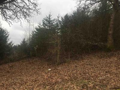 Salem Residential Lots & Land For Sale: Morrow (Parcel #544131) Ct