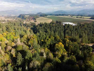 Scio Residential Lots & Land Active Under Contract: 42721 Highway 226 (Lot #702)