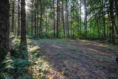 Scio Residential Lots & Land For Sale: 42721 Highway 226 (Lot #701)