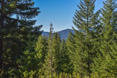 Sweet Home Residential Lots & Land For Sale: Highway 126 (Lot #301)