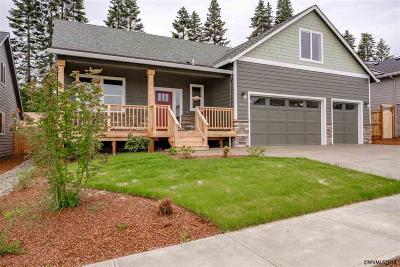 Salem Single Family Home For Sale: 184 Summit View Av
