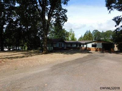 Salem Single Family Home For Sale: 4815 Sunset View Ln