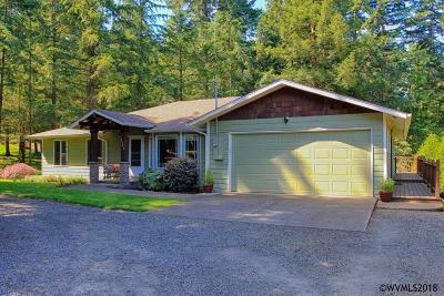 Salem Single Family Home For Sale: 6383 Battle Creek Rd