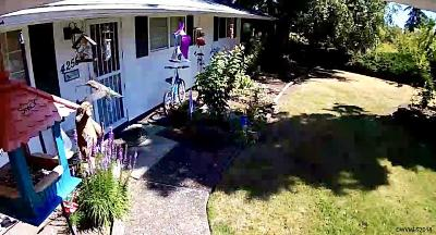 Albany Single Family Home Active Under Contract: 4255 Alder Av