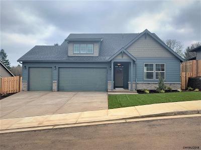 Salem Single Family Home For Sale: 1538 Big Mountain Av