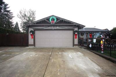 Salem Single Family Home For Sale: 1269 White Cloud Dr