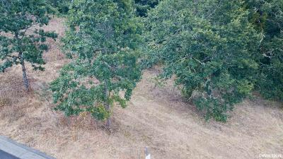 Albany Residential Lots & Land For Sale: 1390 Grand Ridge Dr