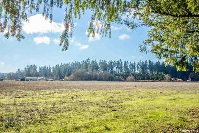 Scio Residential Lots & Land For Sale: 35619 Meridian (Next To) Rd