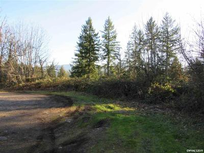 Mill City Residential Lots & Land For Sale: NW Alder (Parcel #41848)