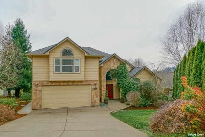 Salem Single Family Home For Sale: 480 Turtle Bay Ct