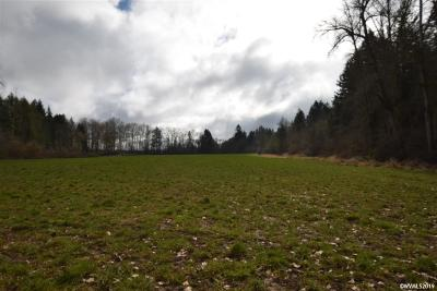 Albany Residential Lots & Land For Sale: 38837 (Behind) Scravel Hill Rd