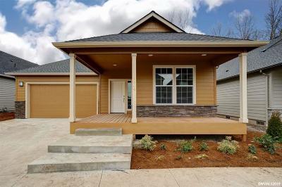 Albany Single Family Home For Sale: 1069 Front (Lot #17) Av