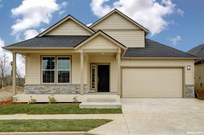 Albany Single Family Home For Sale: 1009 Front (Lot #14) Av