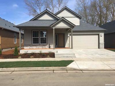 Albany Single Family Home For Sale: 1081 Front (Lot #18) Av