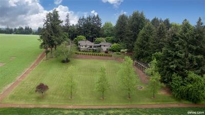Stayton Single Family Home For Sale: 2020 Scenic View Dr