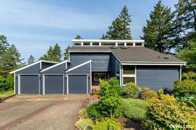 Salem Single Family Home For Sale: 1825 Merritt Dr