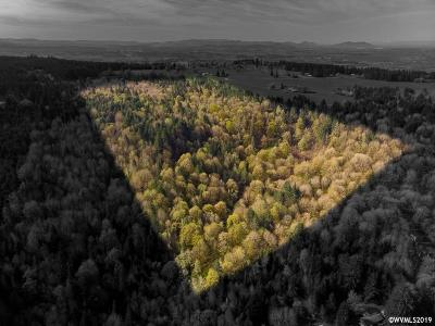 Scio Residential Lots & Land For Sale: 42172 (Next To) Rodgers Mountain Lp