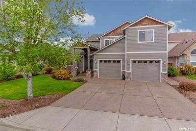 Salem Single Family Home For Sale: 930 Caradon Ct