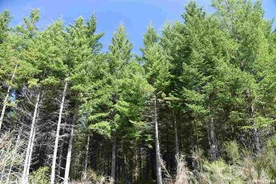 Estacada OR Residential Lots & Land For Sale: $629,000