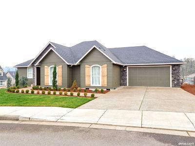 Salem Single Family Home For Sale: 1737 Rainsong Dr