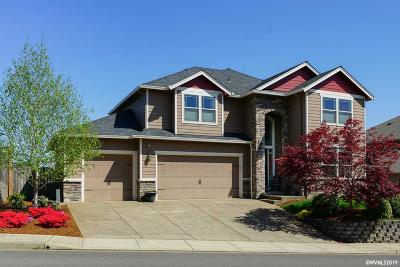 Salem Single Family Home For Sale: 329 Mountain Vista Av