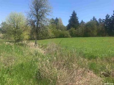 Salem Residential Lots & Land For Sale: 732 Macinnes Ln