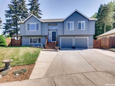 Keizer Single Family Home For Sale: 7944 Katherine St